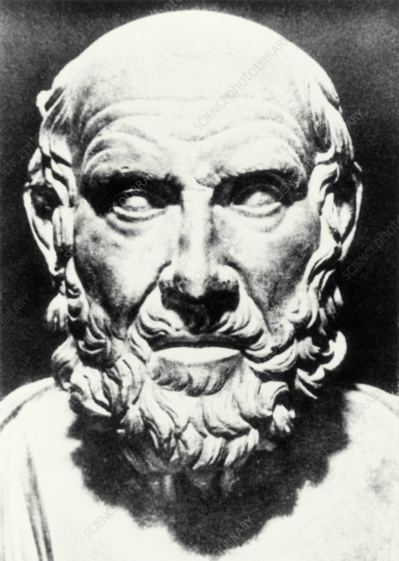 Bust of Greek physician Hippocrates