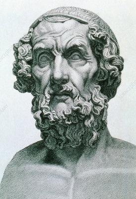 homer greek writer Image of the roman portrait bust of the greek poet homer, from the 1st - 2nd  century.