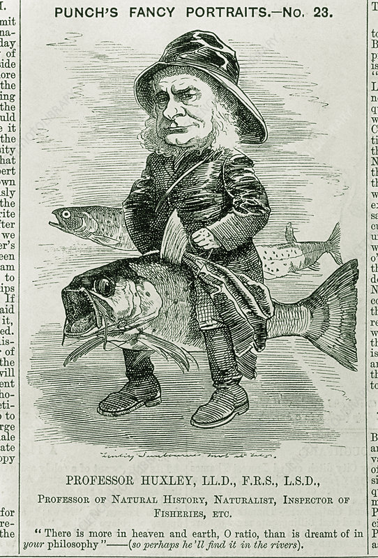 Caricature of Thomas Huxley, British biologist