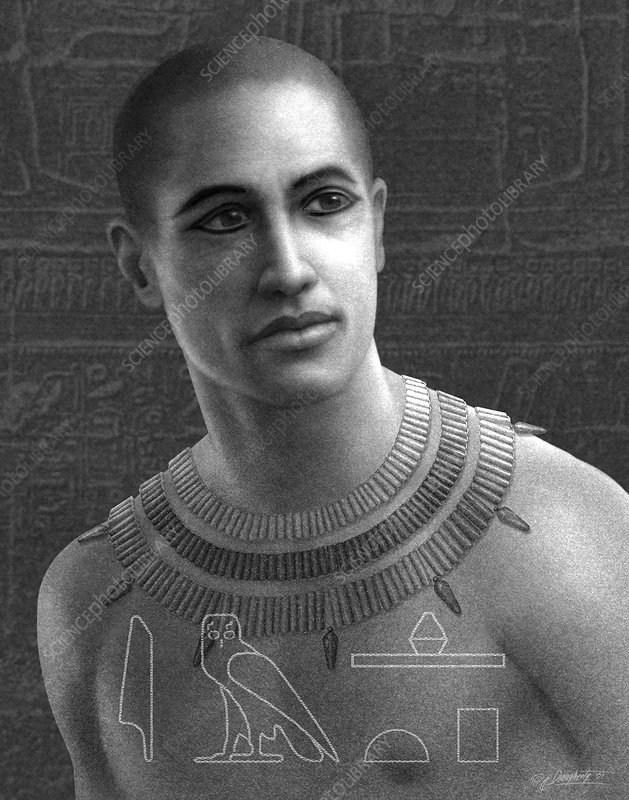 Imhotep stock image h409 0014 science photo library for Imhotep architecte