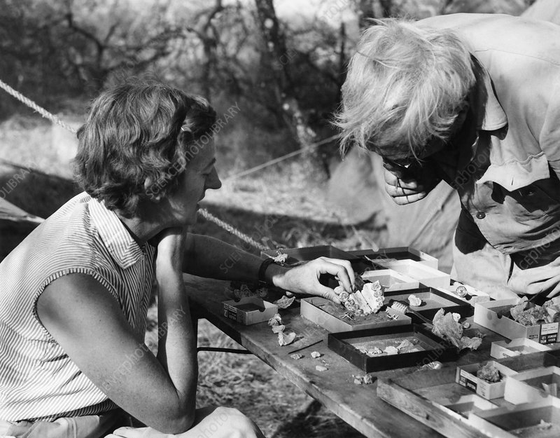 http://www.sciencephoto.com/image/226800/530wm/H4120404-Louis_and_Mary_Leakey,_palaeontologists-SPL.jpg