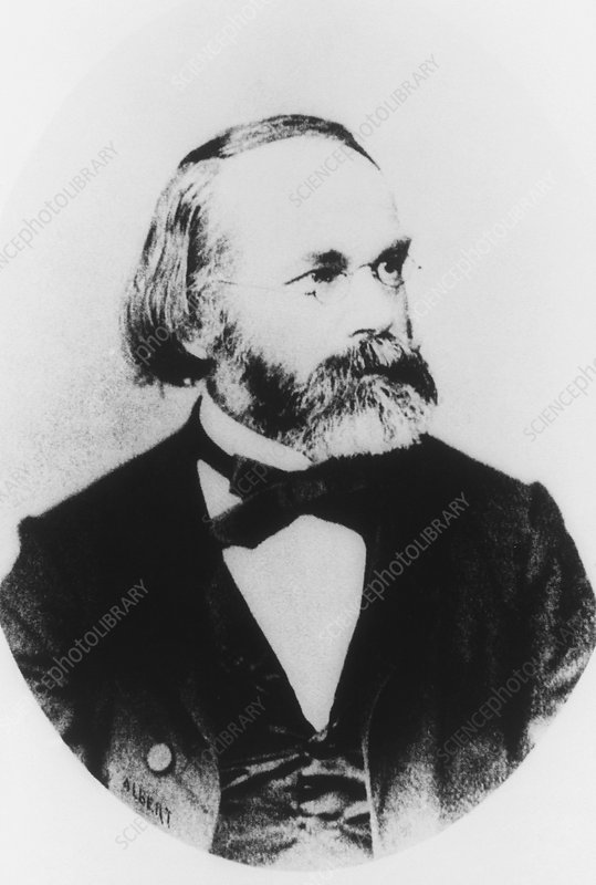 Portrait of German botanist, Carl von Naegeli