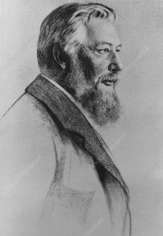 Drawing of Wilhelm Ostwald, German chemist