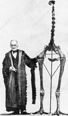 Sir Richard Owen with a giant moa