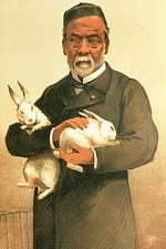 Drawing of French chemist Louis Pasteur & rabbits