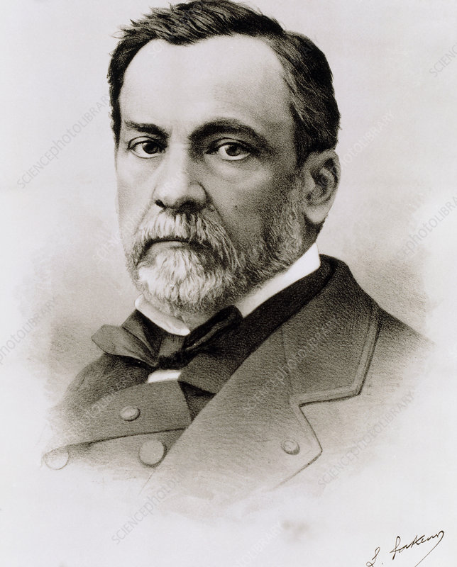 Louis Pasteur French Bacteriologist Stock Image H4160213