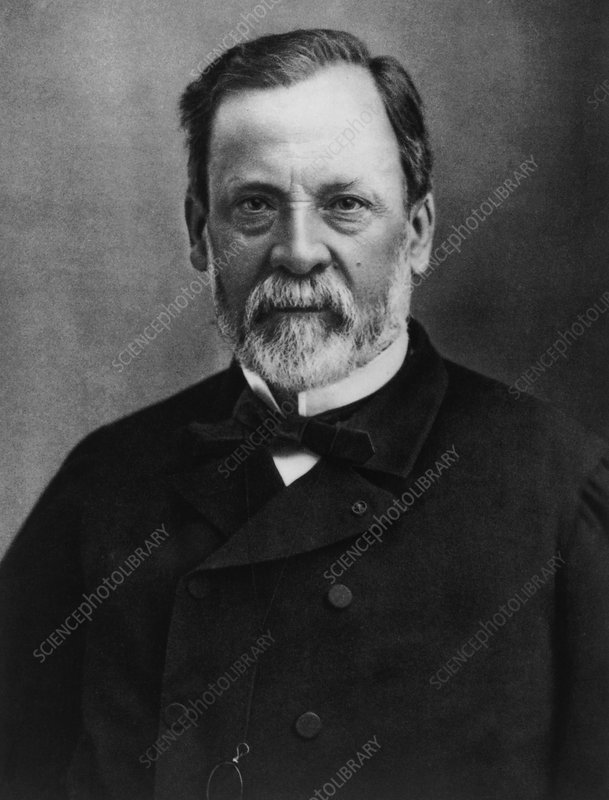Louis Pasteur Stock Image H4160267 Science Photo Library