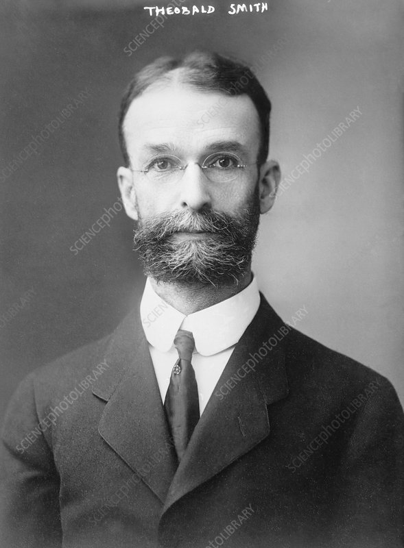 Theobald Smith, US pathologist