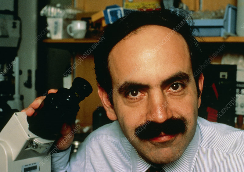 Robert Weinberg, cancer researcher
