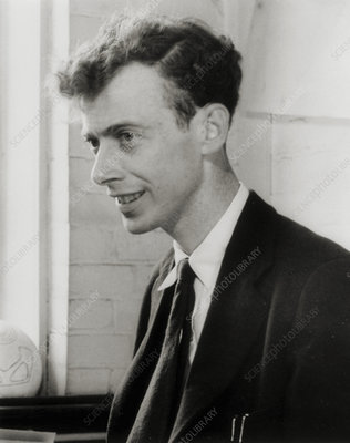 Portrait of James Watson in 1953