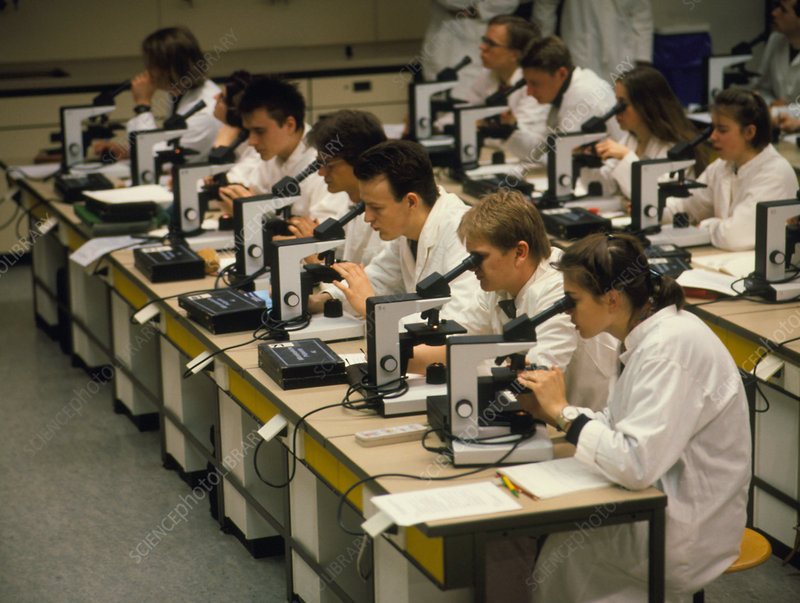 University medical students in microbiology lesson