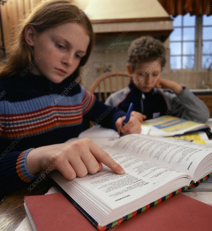 Hp homework helpers