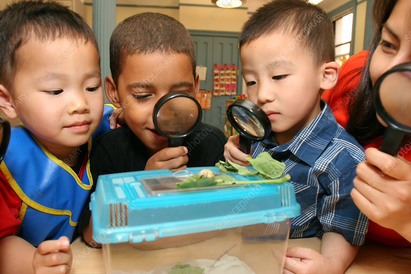Children Explore Nature in Day Care