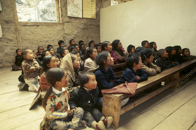 Sherpa Children in School