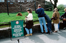 Zoo visitors