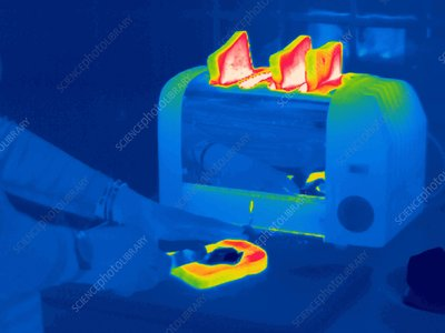 Toast, thermogram