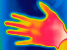 Thermogram of human hand