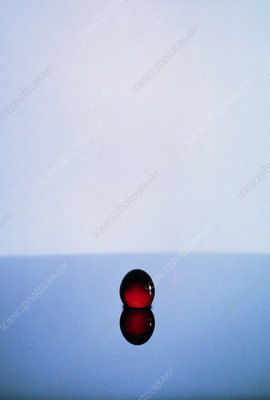 High speed flash photograph of water drop impact