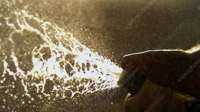Champagne erupting from bottle