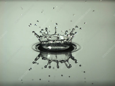 Water drop falls onto thin water layer