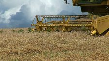 Combine harvesting a field