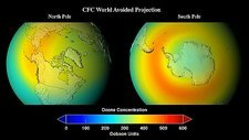 Ozone depletion without CFC ban