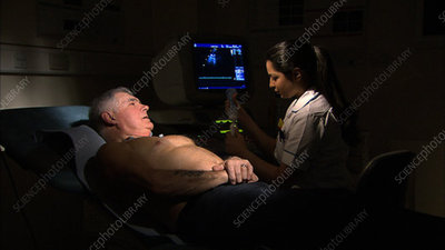 Echocardiography procedure