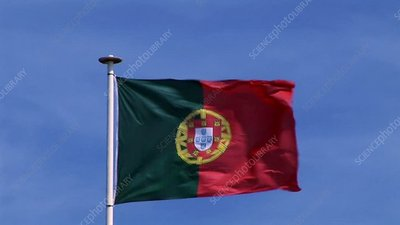 Portuguese Flag in wind