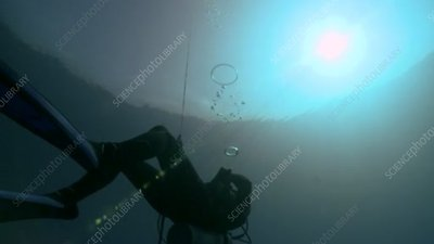 Diver blowing rings