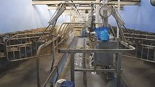 Timelapse of milking parlour
