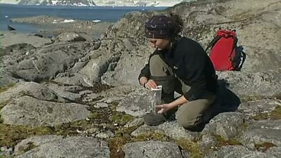 Collecting moss samples