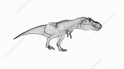 T-Rex wireframe animation