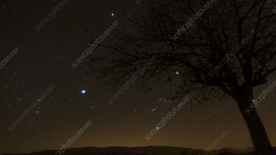 Sirius and Orion, timelapse