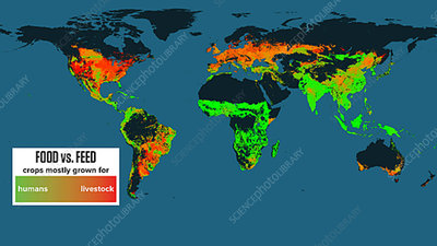Global agricultural density and yields