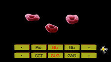 Cause of sickle cell anaemia, animation