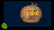 Chloramphenicol drug action, animation