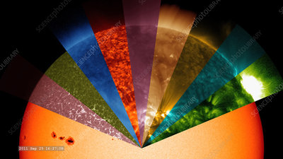 Sun observed at different wavelengths