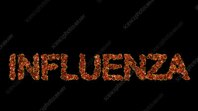 Influenza, conceptual animation