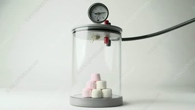 Boyle's Law with marshmallows
