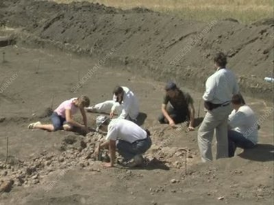 Archaeologists working on site