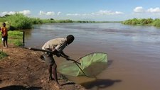 Fisherman, Shire river, Malawi