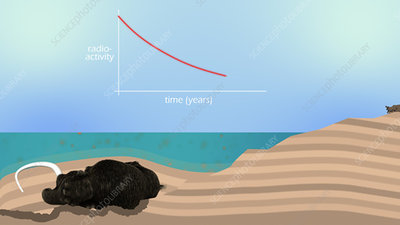 Carbon dating, animation