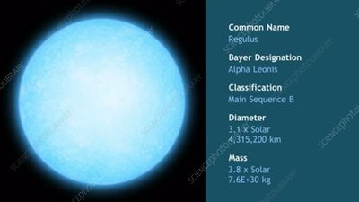 Regulus main sequence star, animation