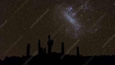 Cacti and Large Magellanic Cloud, time-lapse footage