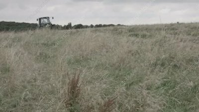 Grass mowing