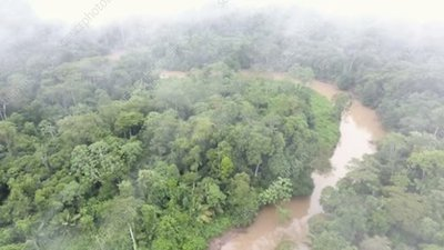 Flying over river in rainforest