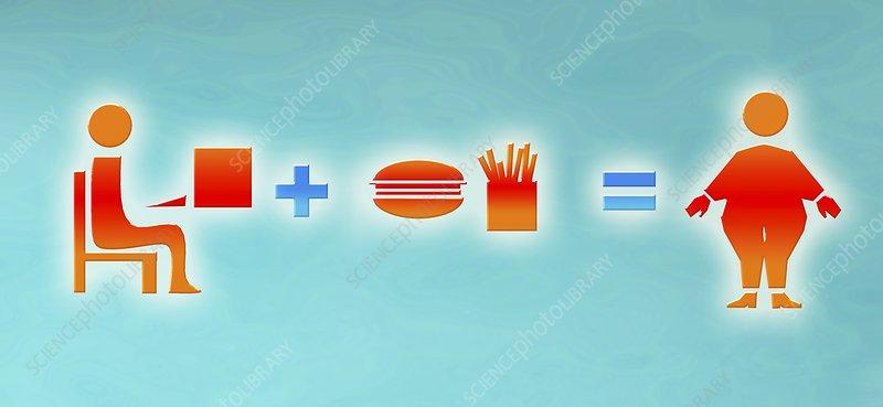 Obesity equation