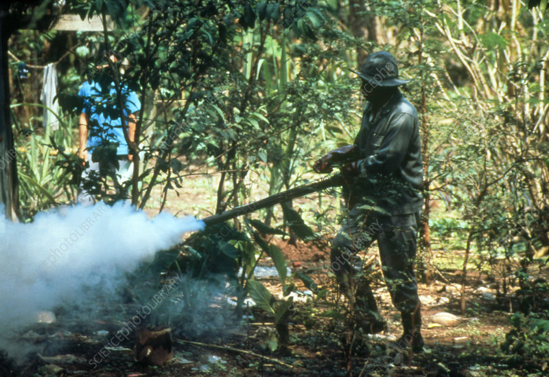 Spraying insecticide to kill malarial mosquitoes