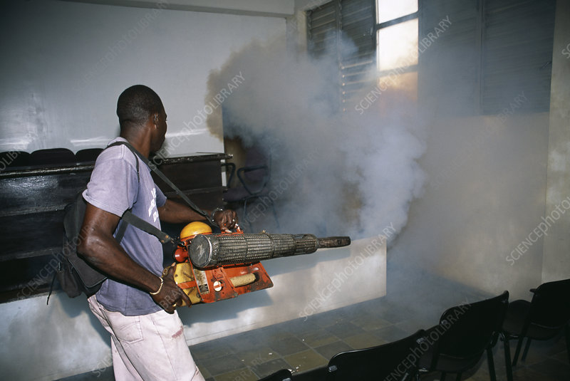 how to kill mosquitoes in your house