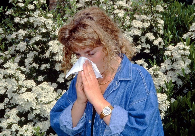 Woman with hay fever blowing nose near flowers